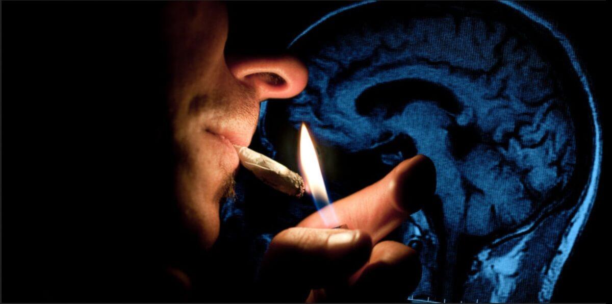 effets-du-cannabis-sur-la-memoire