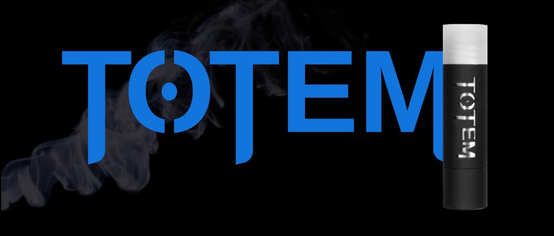 Test Totem, Avis et Présentation